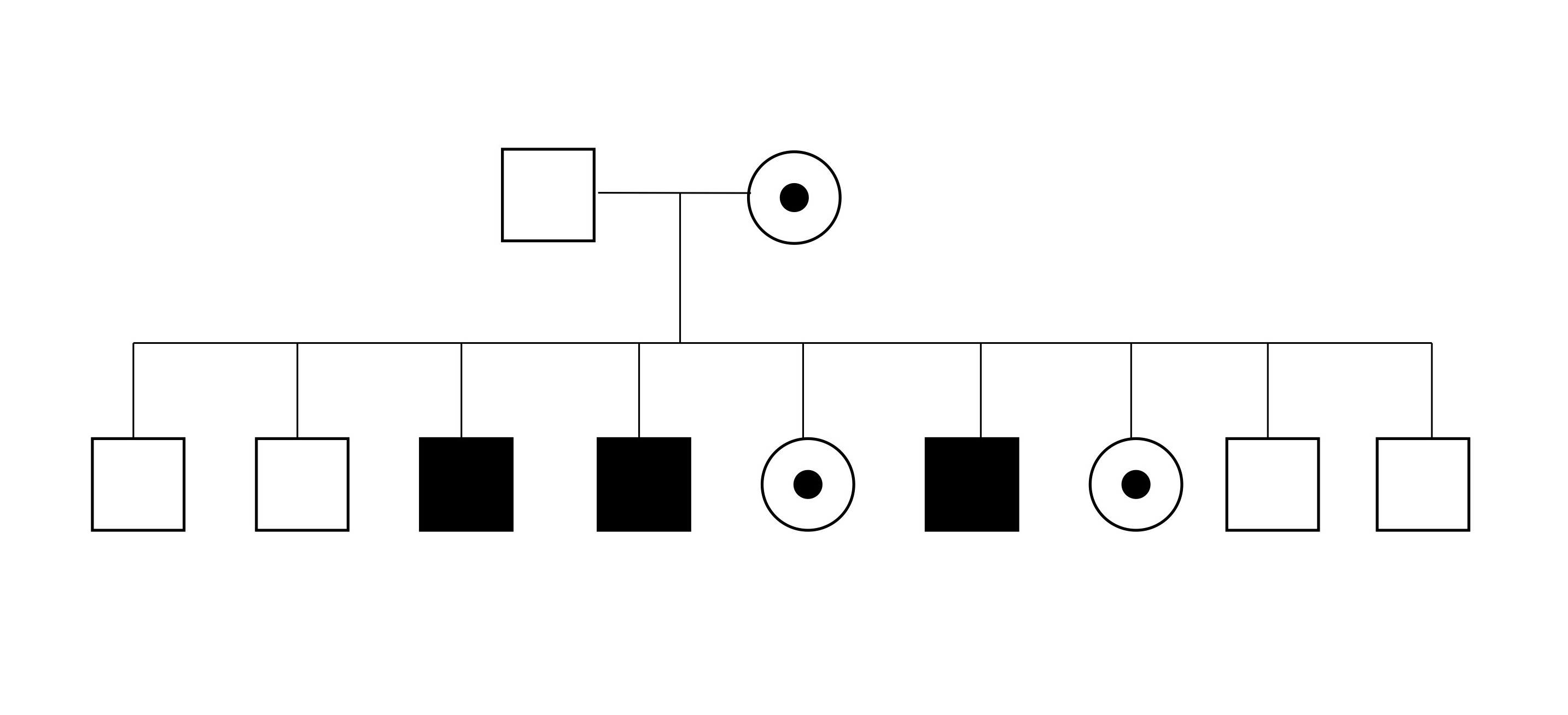 Figure 1: Choroideremia Pedigree
